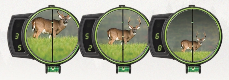 Burris Oracle bowsight